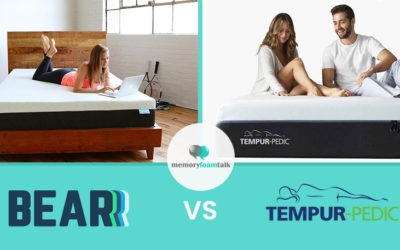 Bear vs. Tempur Pedic