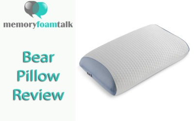 Bear Pillow Review
