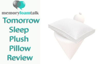 Tomorrow Sleep Plush Pillow Review