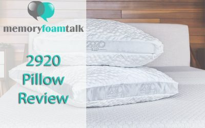 2920 Pillow Review