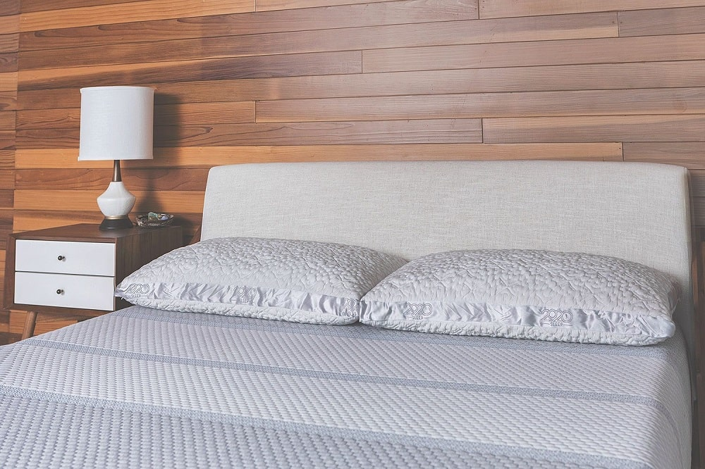 2920 pillow