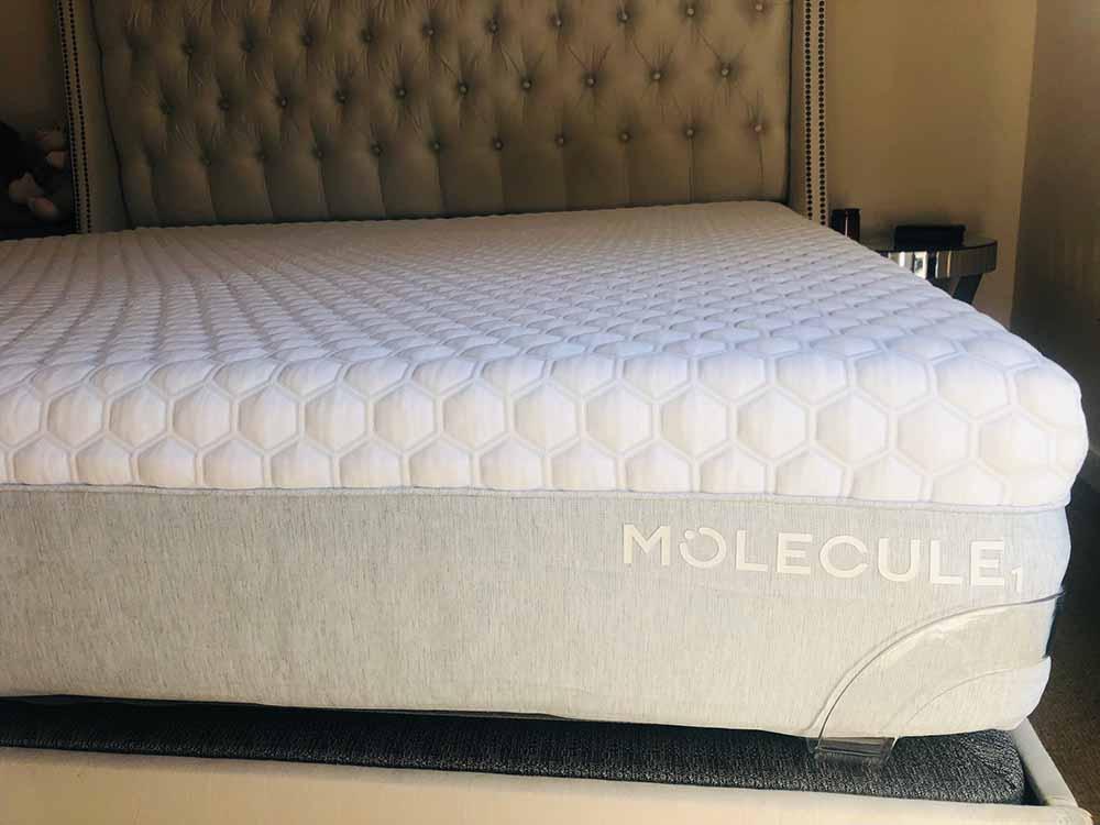 Molecule 1 - profile