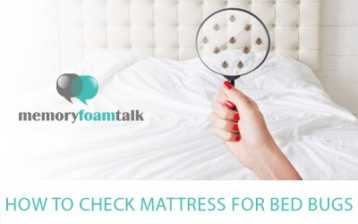 How to Check Mattress for Bed Bugs