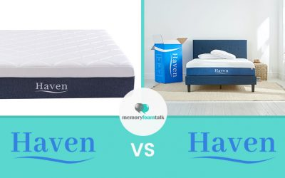 Haven Boutique vs. Haven Premier